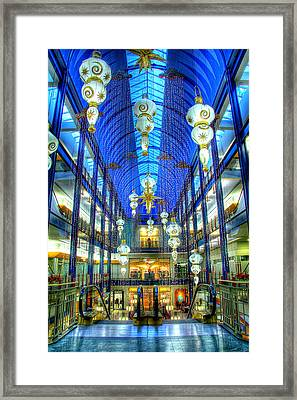 Gaviidae Common Architecture Framed Print
