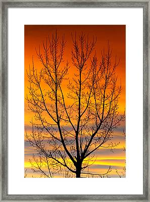 Gavins Sunset 2 Framed Print
