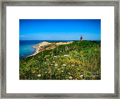 Gay Head Light And Cliffs Framed Print