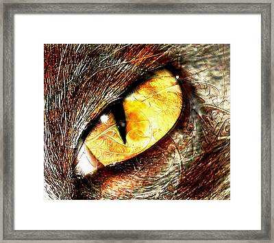Gaze Framed Print