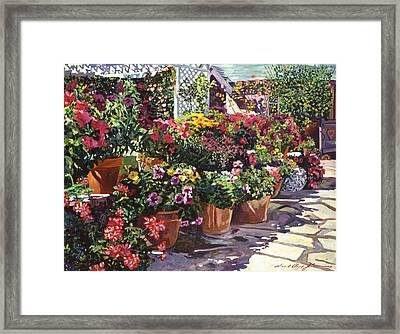 Gazebo Garden Framed Print