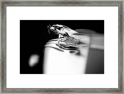 Gazelle Hood Ornament Framed Print by Nick Kloepping