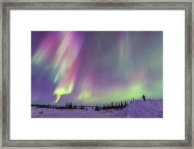 Gazing At A Colourful Twilight Aurora Framed Print