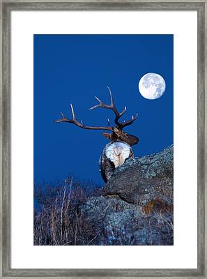 Gazing At The Moon Framed Print by Shane Bechler
