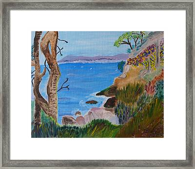 Gazing Out To Sea Framed Print by Meryl Goudey