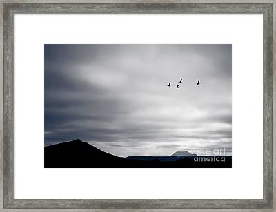 Geese Flying South For Winter Framed Print by Peta Thames