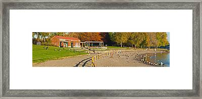 Geese Gathering In Blue Lake Regional Framed Print by Panoramic Images