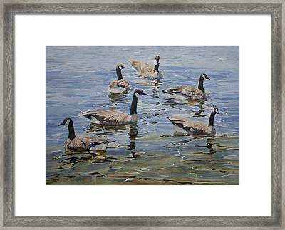 Geese Framed Print by Helal Uddin
