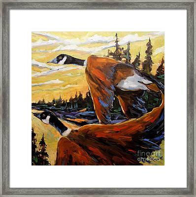 Geese In Flight Framed Print by Richard T Pranke