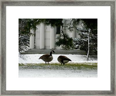 Geese In Snow Framed Print by Kathy Barney