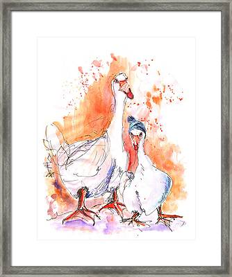 Geese In Spanish Winter Framed Print by Miki De Goodaboom