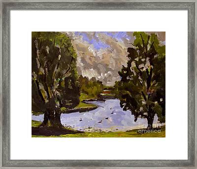 Geese On Raders Pond Framed Print by Charlie Spear
