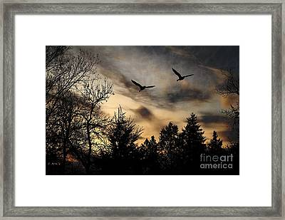 Framed Print featuring the photograph Geese Silhouette by Marjorie Imbeau