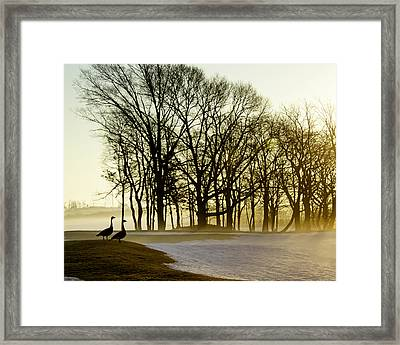 Geese Watching The Sunrise Framed Print by Vicki Jauron