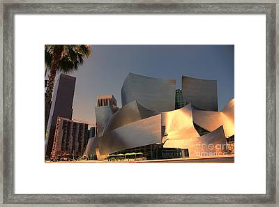 Gehry Tones Framed Print