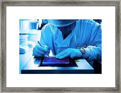 Gel Electrophoresis Framed Print by Dan Dunkley