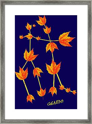 Gemini Constellation Composed By Maple Leaves Framed Print by Paul Ge