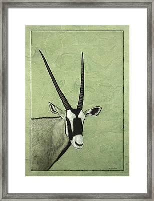 Gemsbok Framed Print