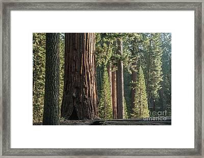 General Grant Circle - 7725 Framed Print