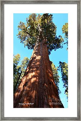 General Sherman Tree Framed Print by Debby Pueschel