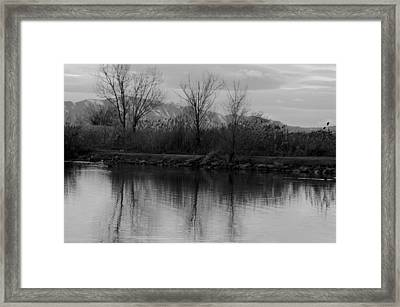 Generation Framed Print by Robert Reese