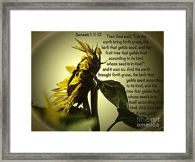 Genesis 1 11-12 Framed Print by Donna Brown
