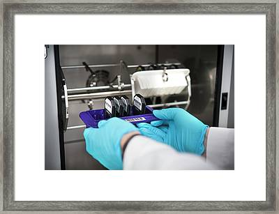 Genetic Analysis Framed Print