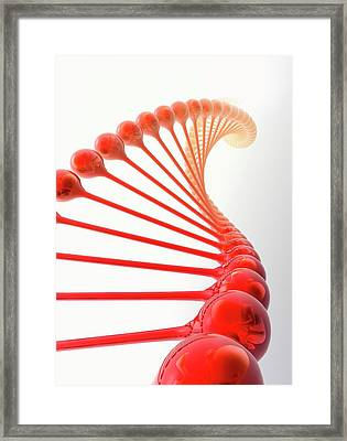 Genetic Engineering Framed Print by Victor Habbick Visions