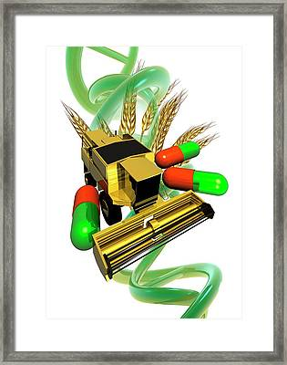 Genetically Modified Crops Framed Print by Victor Habbick Visions