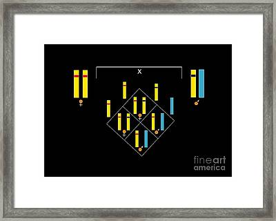 Genetics Of Color Blindness, Artwork Framed Print