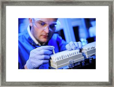 Genetics Research Framed Print by Dan Dunkley