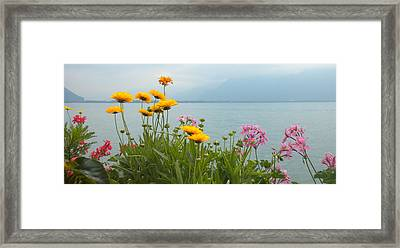 Geneva Flowers Framed Print by Teresa Tilley