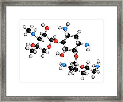 Gentamicin Antibiotic Molecule Framed Print by Molekuul