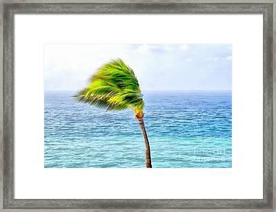 Gentle Breeze Framed Print by Krissy Katsimbras