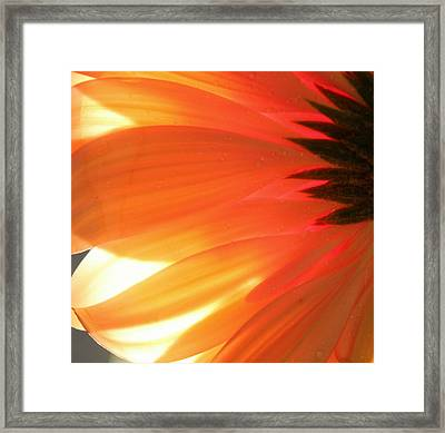 Gentle Flame Framed Print