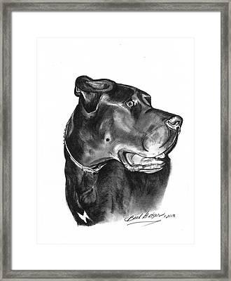Gentle Giant' Framed Print by Barb Baker