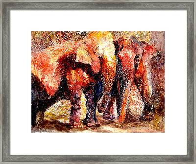 Gentle Giants Framed Print by Beverly Berwick