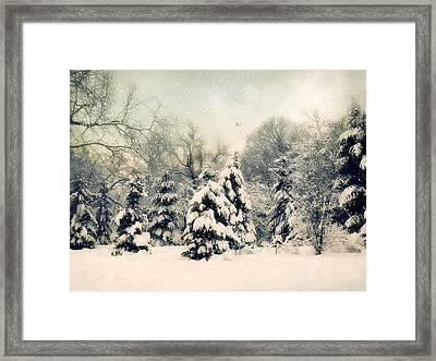 Gentle January Framed Print