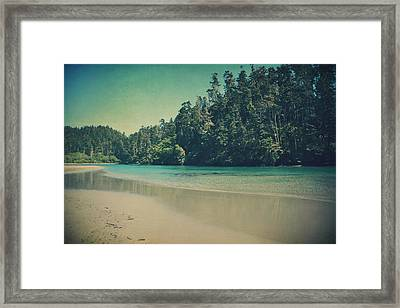 Gentle Musings Framed Print by Laurie Search