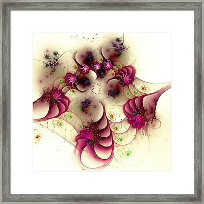 Gentle Pink Framed Print