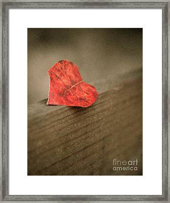 Gentle Reminder Framed Print