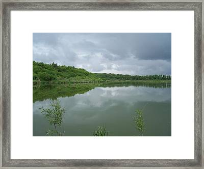 Framed Print featuring the photograph Gentle Spring Day by Teresa Schomig