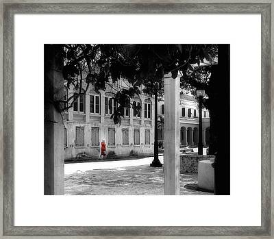 Gentle Warrior On Strand Street Framed Print