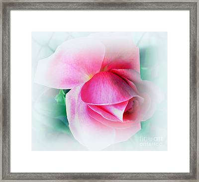 Gentleness And Grace Framed Print by Judy Palkimas