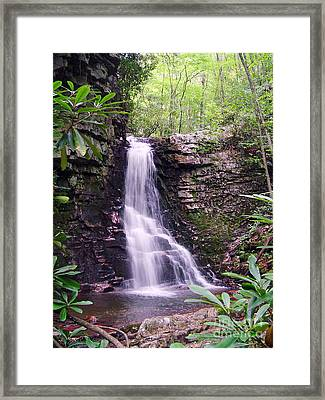 Gentry Creek- Upper Falls Framed Print