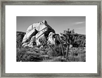 Geology Tour Road Framed Print by Peter Tellone
