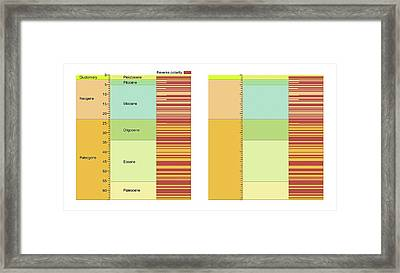 Geomagnetic Polarity Time Scale Framed Print by Gary Hincks