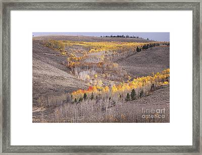 Geometric Autumn Patterns In The Rockies Framed Print