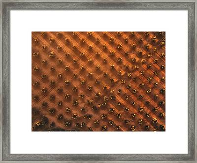 Geometry Of Oil Framed Print
