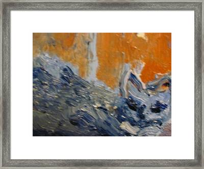 George Framed Print by Shea Holliman